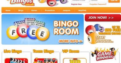 Netplay Bingo